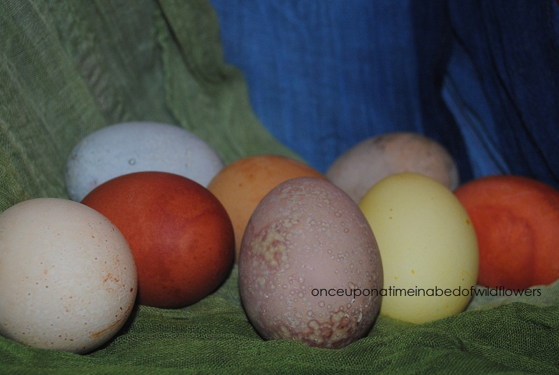 How to dye eggs using natural dyes