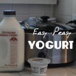 Easy-Peasy Yogurt