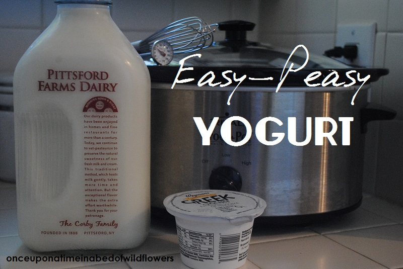 Easy-Peasy Yogurt (in the crock pot)