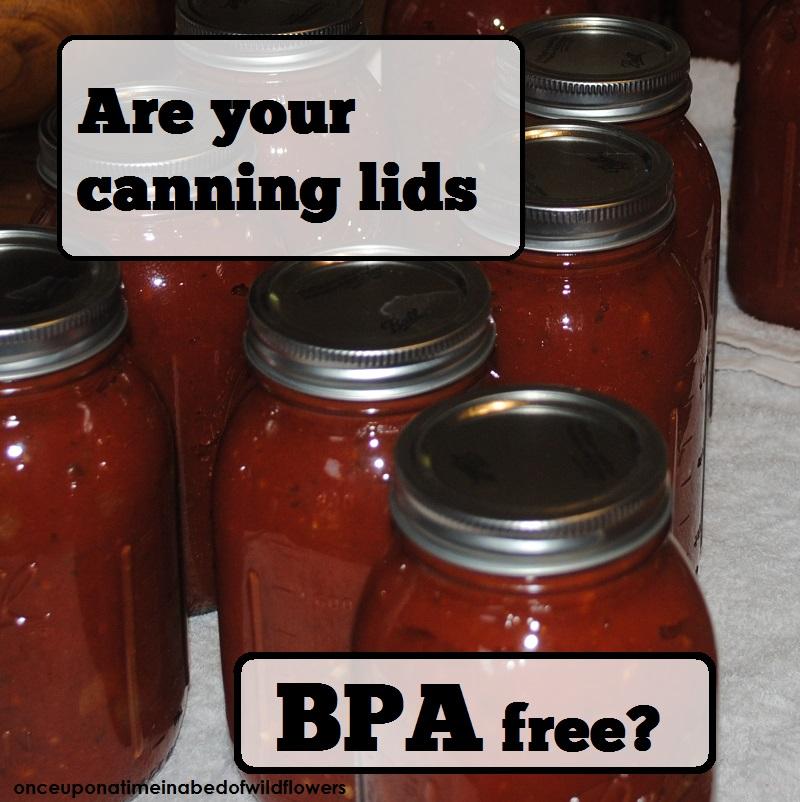 Canning lids1