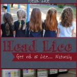 Get rid of lice naturally, without resorting to dangerous chemicals via Once Upon a Time in a Bed of Wildflowers