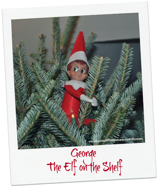 Our Elf on the Shelf wraps Winter Holiday books -- one for each night between Thanksgiving and Christmas // Once Upon a Time in a Bed of Wildflowers