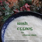 Irish Eggnog |Once Upon a Time in a Bed of Wildflowers