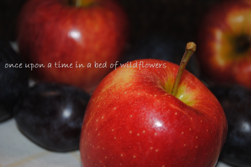 Apples and Prunes | Once Upon a Time in a Bed of Wildflowers