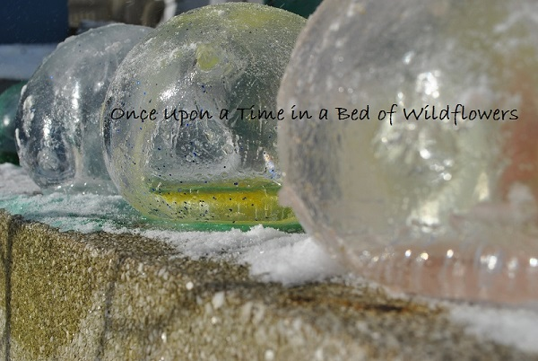 Ice Marbles | Once Upon a Time in a Bed of Wildflowers