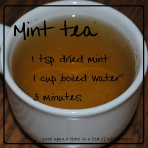 Mint Tea | Once Upon a Time in a Bed of Wildflowers
