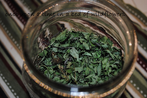 Store dried mint in a Mason Jar | Once Upon a Time in a Bed of Wildflowers