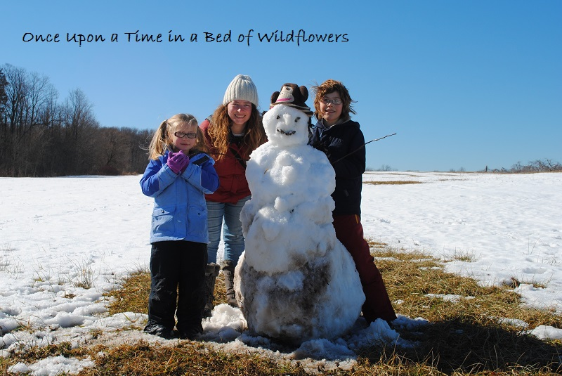 Snowman | Once Upon a Time in a Bed of Wildflowers