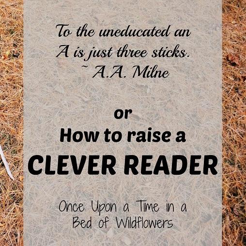 clever reader2 - Copy