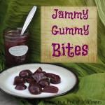 jammy gummy bites sq