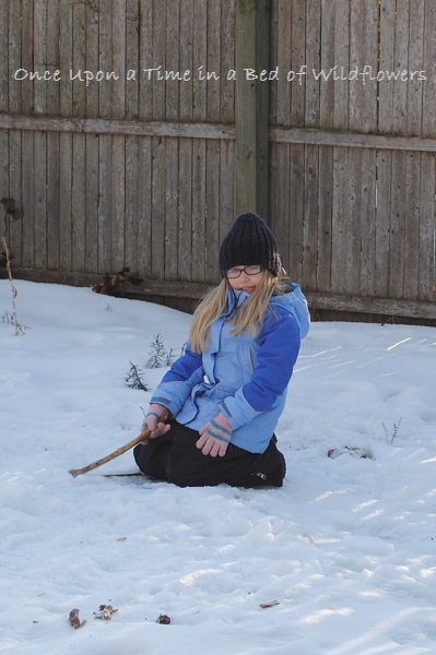 Pixie Gardening in the Snow / My Week on Wednesday / Once Upon a Time in a Bed of Wildflowers
