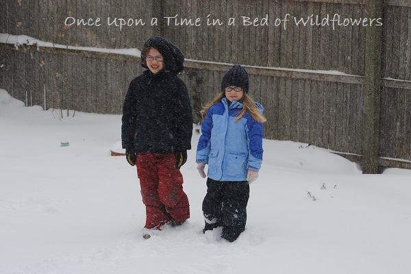 Snow Day! / My Week on Wednesday / Once Upon a Time in a Bed of Wildflowers