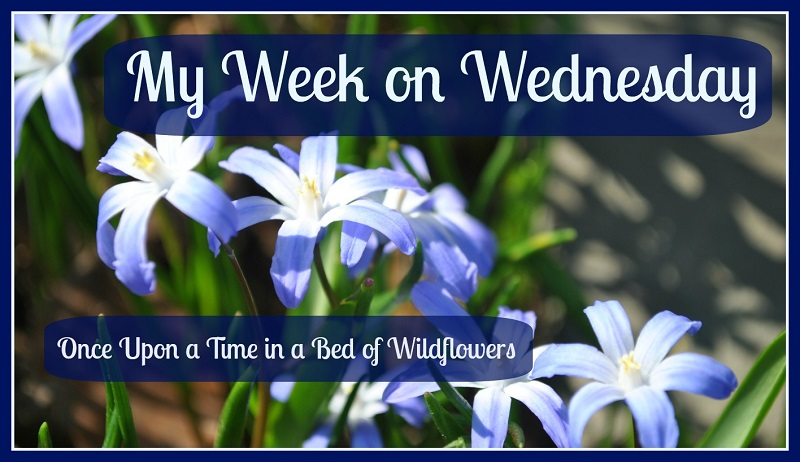 "Join me for 'My Week on Wednesday""… where I share what I've been doing all week!"