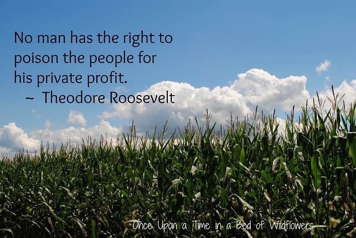 """No one has the right to poison the people for his private profit."" ~ Theodore Roosevelt"