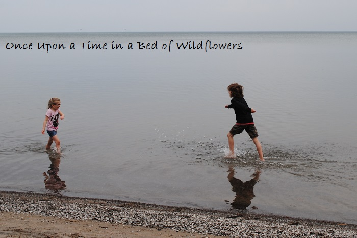 Spring Break // Once Upon a Time in a Bed of Wildflowers