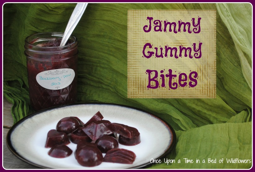 Jammy Gummy Bites // Once Upon a Time in a Bed of Wildflowers