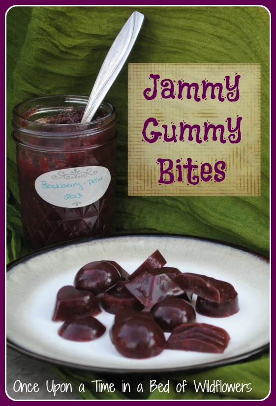Jammy Gummy Bites -- the perfect way to use up last year's jam before jam making season starts all over again! From Once Upon a Time in a Bed of Wildflowers