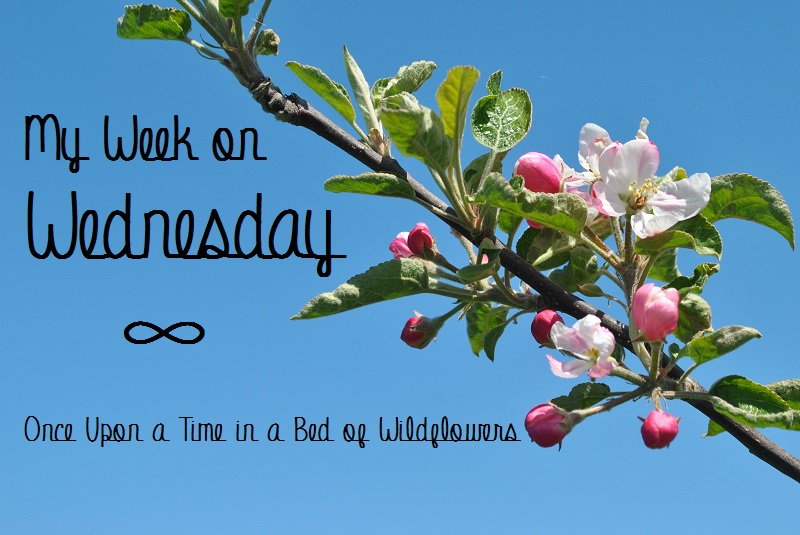 My Week on Wednesday // Once Upon a Time in a Bed of Wildflowers