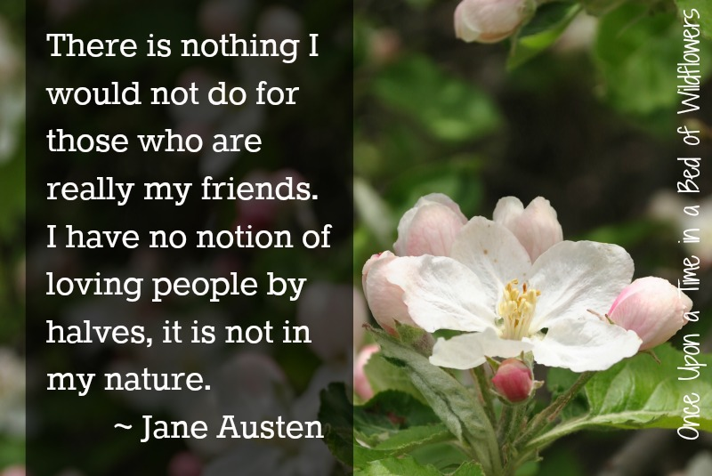 Jane Austen Quote // Once Upon a Time in a Bed of Wildflowers