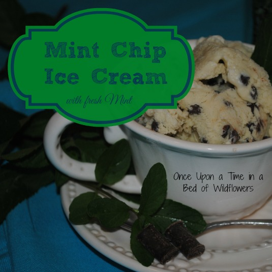 Mint Chip Ice Cream // Once Upon a Time in a Bed of Wildflowers
