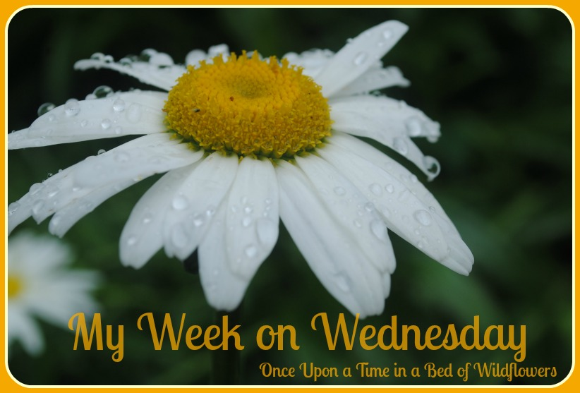 Join me each week for My Week on Wednesday! Come see what I have been up to, some of  blogs I have visited, and the new things I have learned.