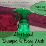 All Natural Shampoo and Body Wash from Once Upon a Time in a Bed of Wildflowers