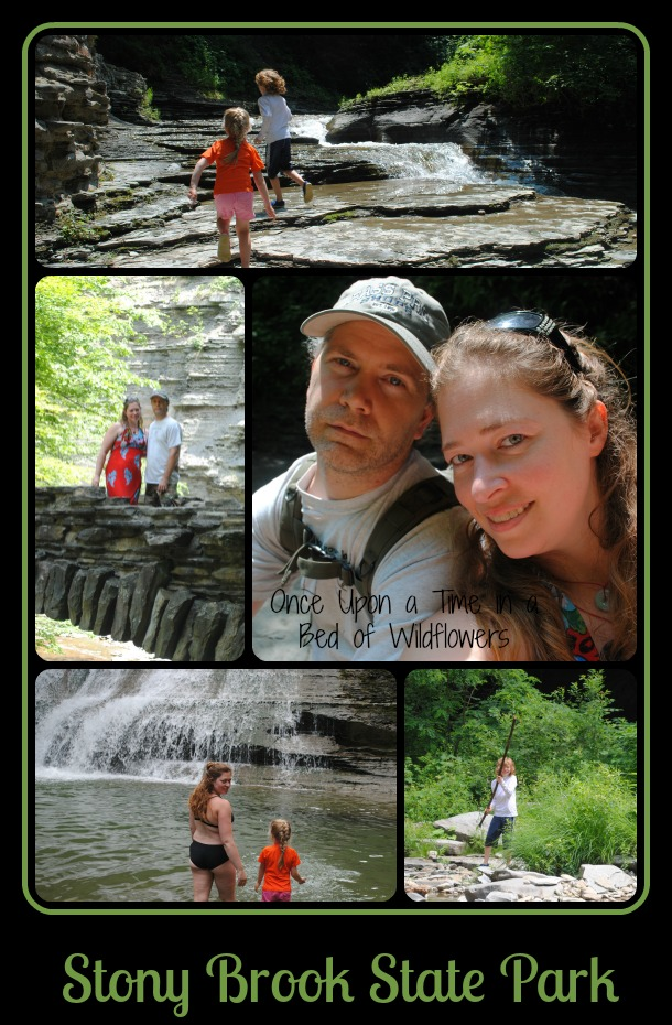 Stony Brook State Park via Once Upon a Time in a Bed of Wildflowers