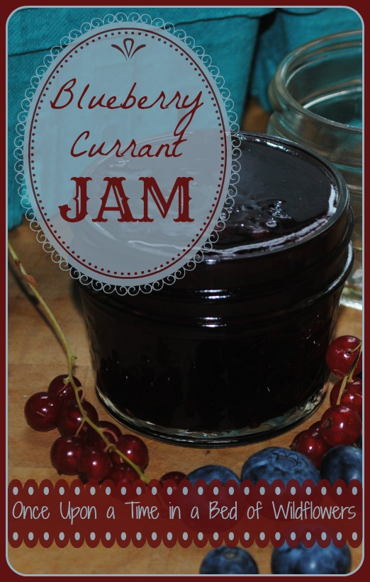 Blueberry Currant Jam by Once Upon a Time in a Bed of Wildflowers