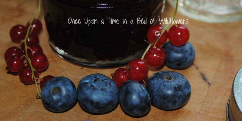 blueberries, currants, and jam via Once Upon a Time in a Bed of Wildflowers