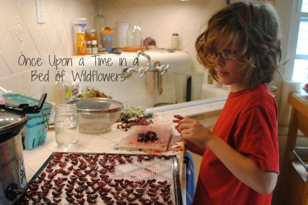 drying cherries via Once Upon a Time in a Bed of Wildflowers