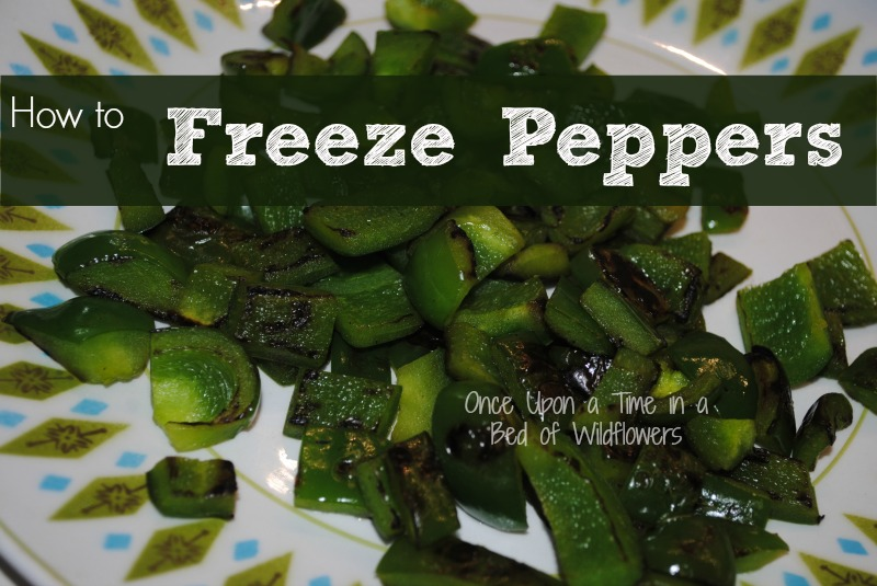 How to Freeze Peppers via Once Upon a Time in a Bed of Wildflowers