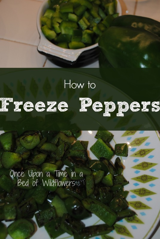 How to freeze peppers // Once Upon a Time in a Bed of Wildflowers