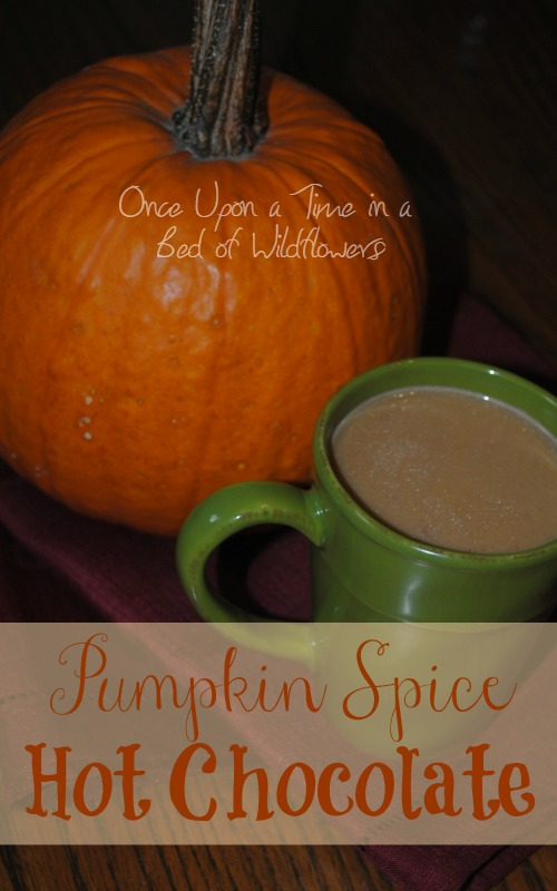 Looking for a healthful pumpkin spice drink for a chilly afternoon? Try Pumpkin Spice Hot Chocolate from Once Upon a Time in a Bed of Wildflowers