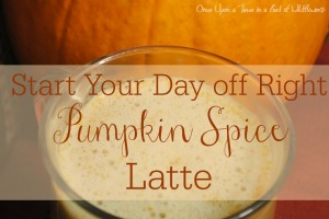 Start your day off right with a nutritious Pumpkin Spice Latte from Once Upon a Time in a Bed of Wildflowers