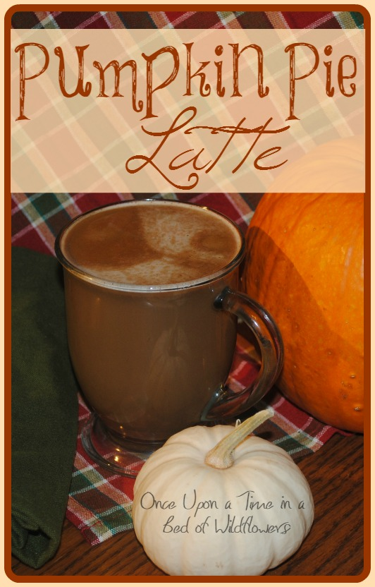 Looking for a rich, decadent fall treat? Try Pumpkin Pie Latte from Once Upon a Time in a Bed of Wildflowers. Which is basically just a piece of pumpkin pie in a coffee cup.