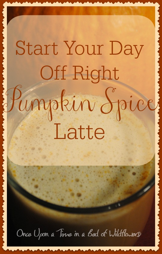 Looking for a good Real Food alternative to the sugar-laden pumpkin spice coffeehouse drinks? Try this one from Once Upon a Time in a Bed of Wildflowers