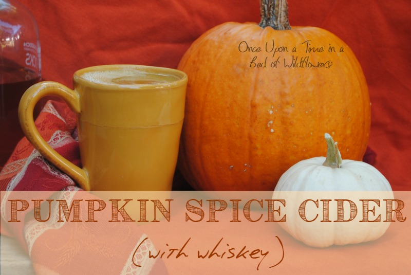 Pumpkin Spice Cider (with Whiskey) via Once Upon a Time in a Bed of Wildflowers