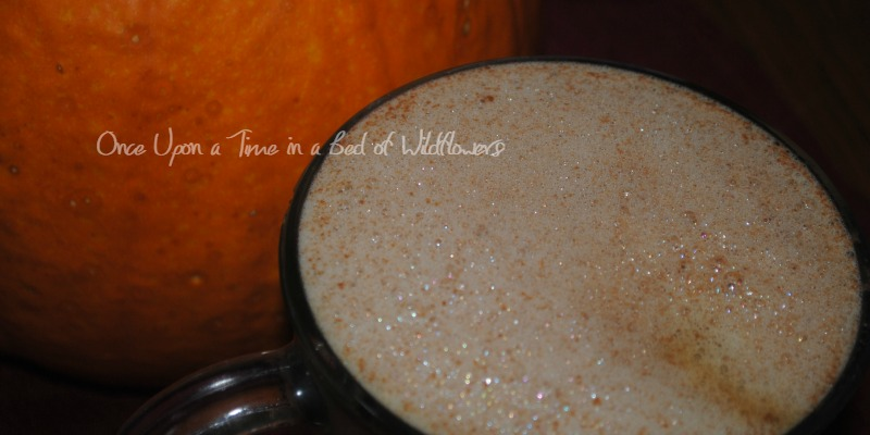 Pumpkin Spice Mocha via Once Upon a Time in a Bed of Wildflowers