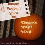 Homemade Pumpkin Spice Mix from Once Upon a Time in a Bed of Wildflowers -- just in time for pumpkin spice everything!