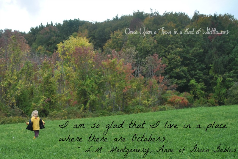 Quote of the Week from Once Upon a Time in a Bed of Wildflowers