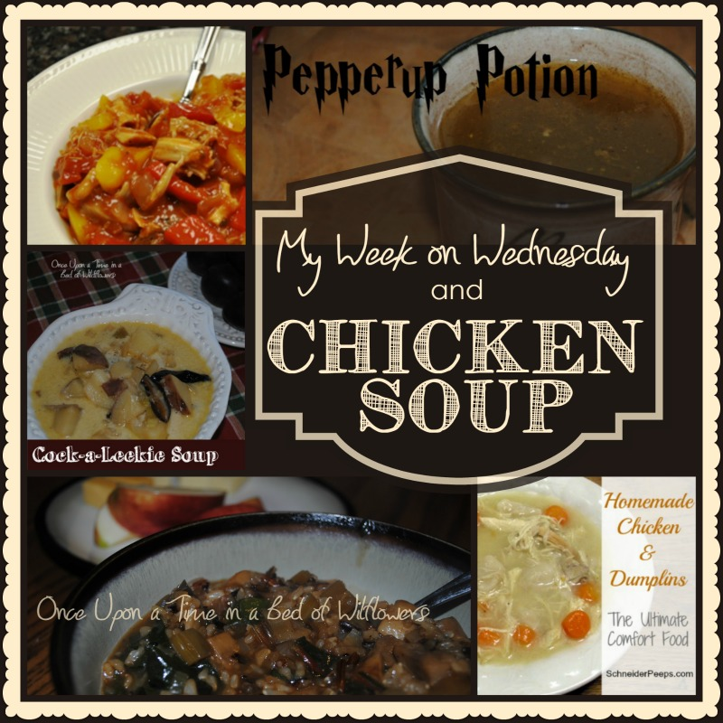 My Week on Wednesday and Chicken Soup from Once Upon a Time in a Bed of Wildflowers