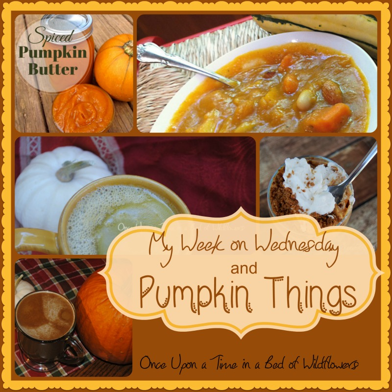 My Week on Wednesday and Pumpkin Things via Once Upon a Time in a Bed of WIldflowers