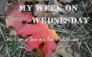 Join us each week for My Week on Wednesday to find out what Christine from Once Upon a Time in a Bed of Wildflowers has been doing all week and also to find some GREAT links about that week's THEME