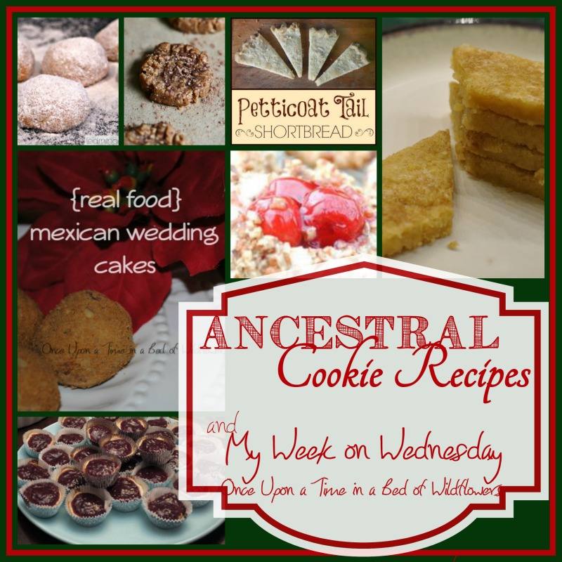 Ancestral Cookie Recipes via Once Upon a Time in a Bed of Wildflowers