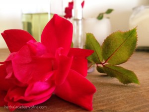 Recipe-Sweet-Oranges-and-Rose-Perfume1