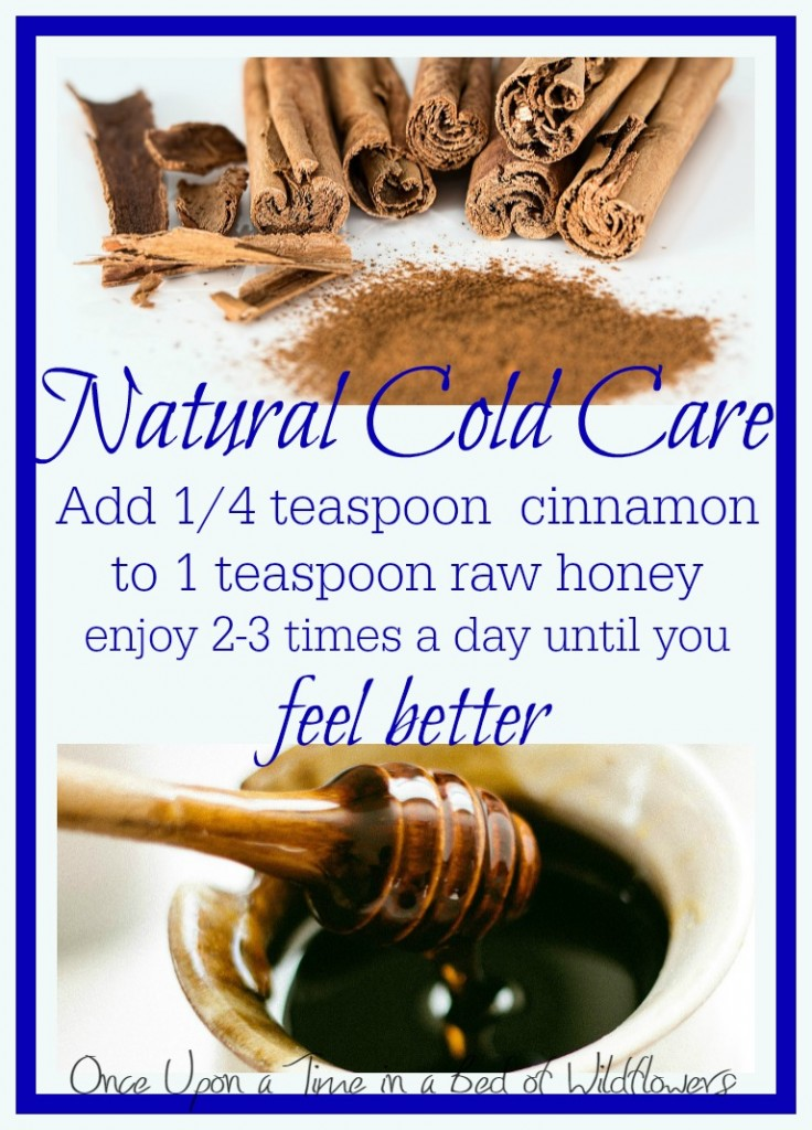 Honey and Cinnamon for Natural Cold Care