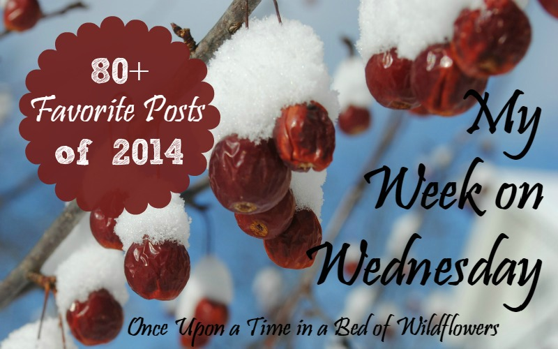 My Week on Wednesday / New Year's Edition / Once Upon a Time in a Bed of Wildflowers