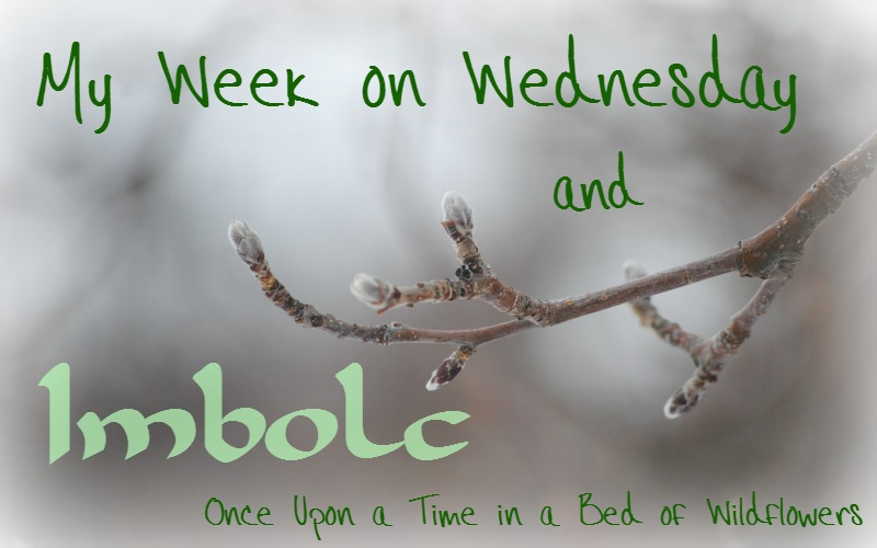Imbolc // Once Upon a Time in a Bed of Wildflowers