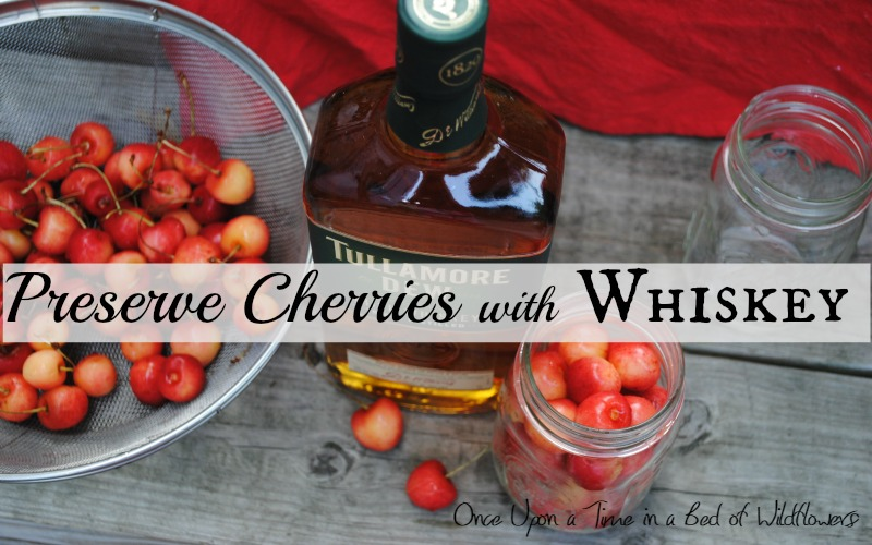 The easiest way to preserve cherries -- with whiskey! Via Once Upon a Time in a Bed of Wildflowers