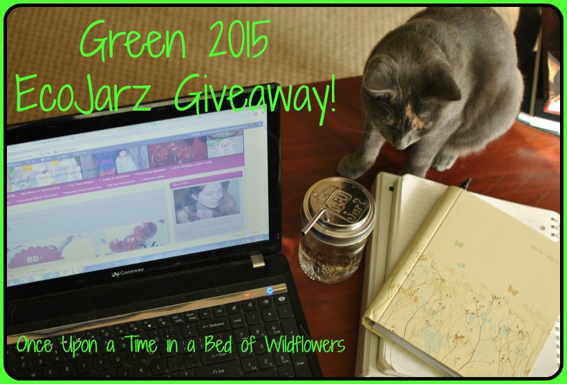 Would you like to Go Green in 2015? Join me and my friends from the From the Farm Blog Hop in this #ecojarz #giveaway // Once Upon a Time in a Bed of Wildflowers
